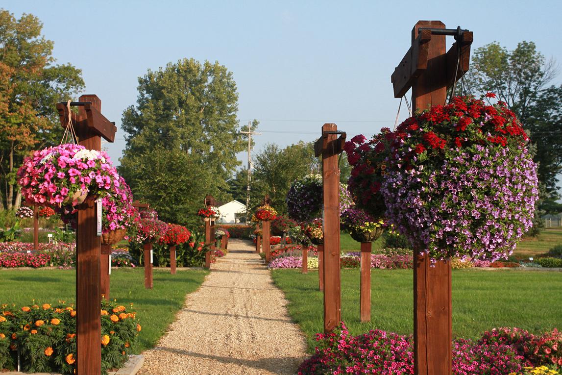 Heartland Growers | Wholesale Nursery and Greenhouse
